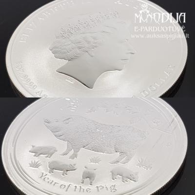 Sidabrinė moneta