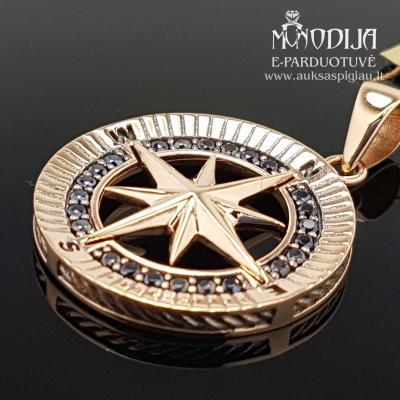 Auksinis pakabukas Kompasas